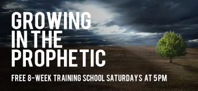 Growing in the Prophetic - Free 8 week training class